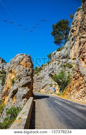 The largest alpine canyon Verdon, Provence, France. The migrating cranes over mountain road