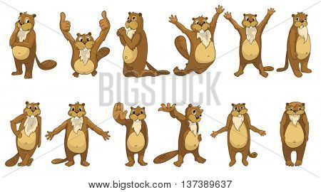 Set of cute full length beavers standing with open arms, giving thumbs up, shrugging shoulders, waving hand, giving five, jumping, praying. Vector illustration isolated on white background.