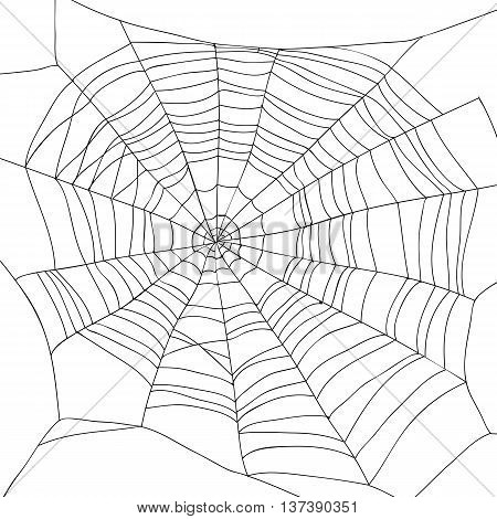 Abstract drawing of a spiderweb on a white background. Vector illustration. Elements for design.