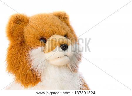 Dolly Dog toy beautiful on white background