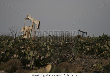 Cactus Oilwell3