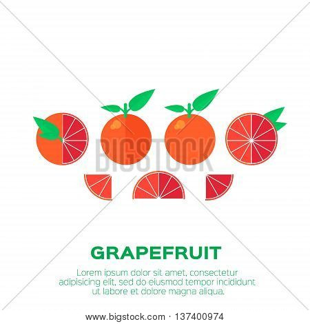 Summer set of Grapefruit. Whole and cut half healthy grapefruits. Vector illustration