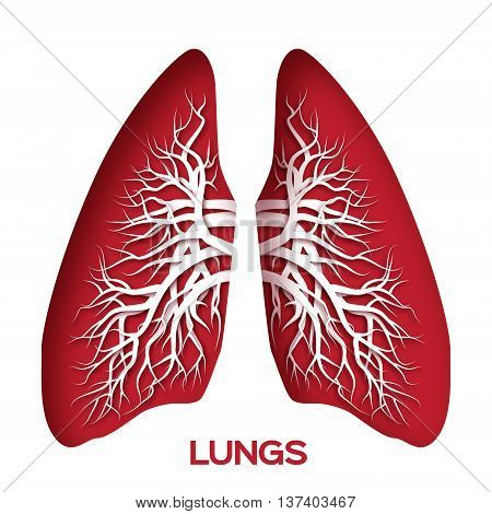 Lungs origami. Red Paper cut Human Lungs anatomy with bronchial tree. Applique Vector design illustration.