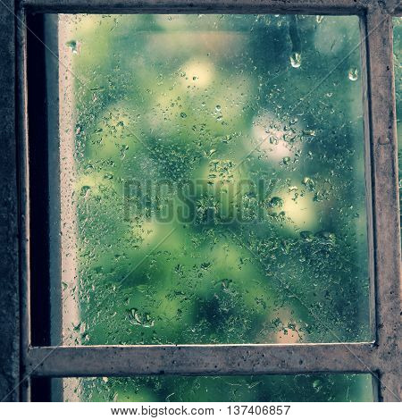Rain Drop On Window