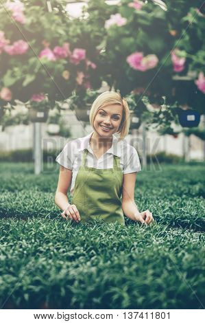 The best job ever. Beautiful young woman in apron gardening and looking at camera