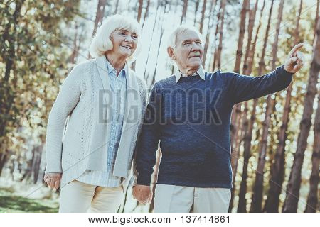 Look at that! Low angle view of happy senior couple holding hands and walking by par while man pointing away