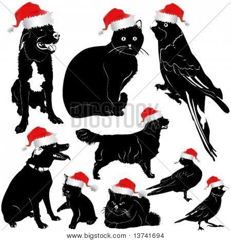 christmas pet animal (dog, cat, bird)