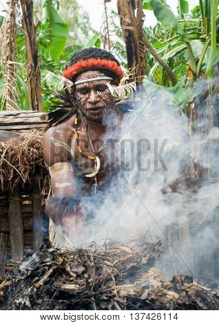 The Warrior Of A Papuan Tribe In Traditional Clothes And Coloring In New Guinea Island