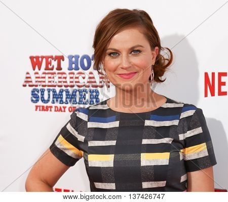 NEW YORK-JUL 22: Actress Amy Poehler attends the 'Wet Hot American Summer: First Day of Camp' Series Premiere at SVA Theater on July 22, 2015 in New York City.