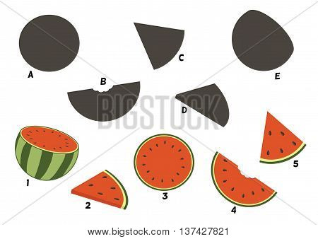 Cartoon watermelon.Find the right shadow image. Educational games for kids.Vector stock illustration