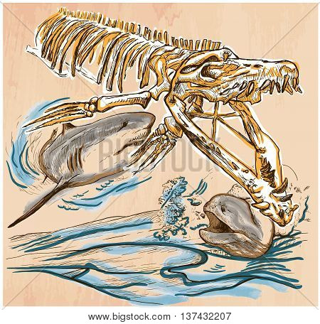 An hand drawn vector - Underwater PREHISTORY. Tylosaurus skeleton Shark and Giant Moray - colored line art. Vector is editable in groups and layers - freehand sketching.