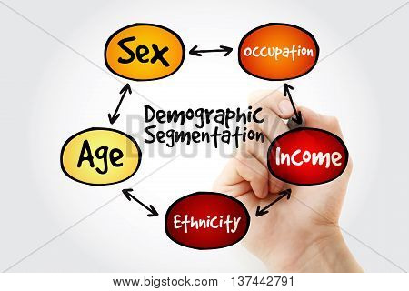 Hand Writing Demographic Segmentation