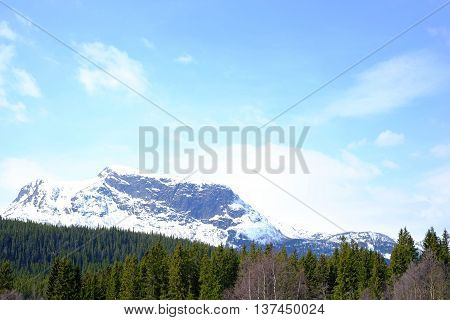 Snowy Mountains And Forests