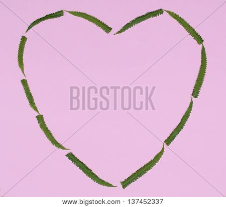the heart of the green fern leaves on pink paper background with space for inscription macro
