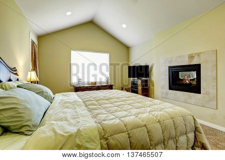Master Bedroom With Built In Fireplace And Vaulted Ceiling.