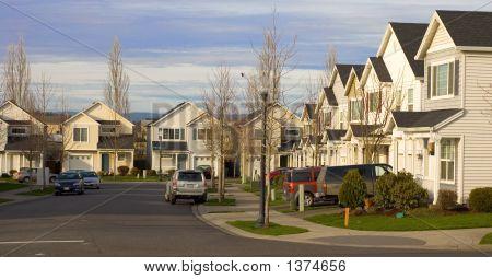 Neighborhood With Houses