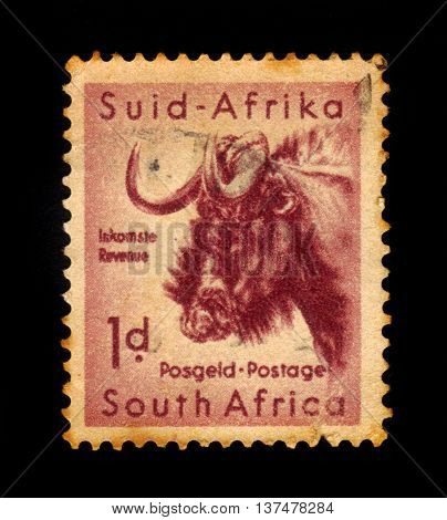 SOUTH AFRICA - CIRCA 1954: A stamp printed in South Africa shows wildebeest, south african wildlife, Kruger park series, circa 1954