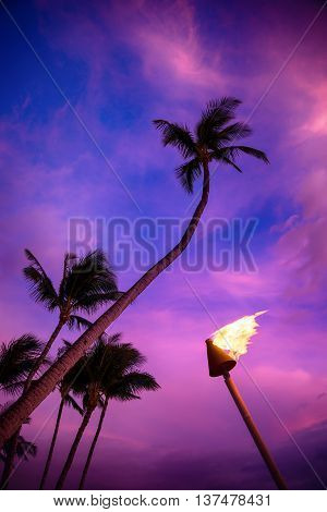 A lit tiki torch against colorful tropical sunset with palm trees