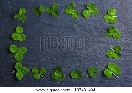 Frame of clover leaves on dark background