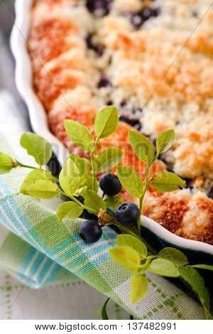 Branch Of Blueberries From Woods In Front Of Berry Pie