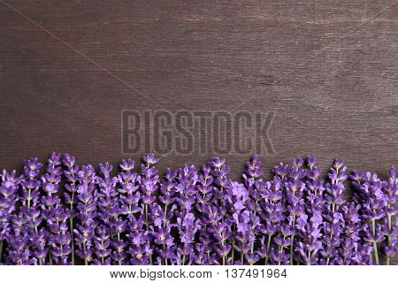 Frame with lavender on a dark wooden background.