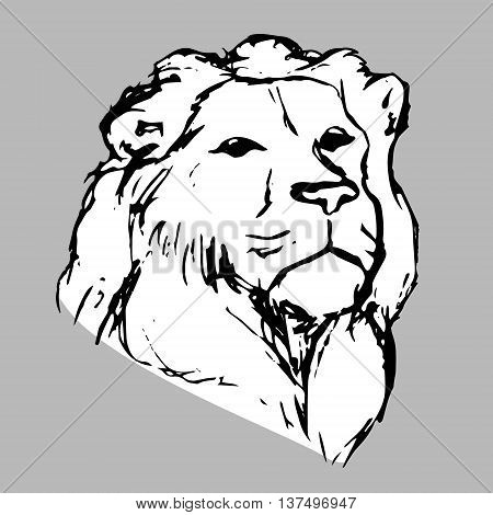 Graphic image of a lion. White lion head on gray background abstract pattern. Lion with mane vector