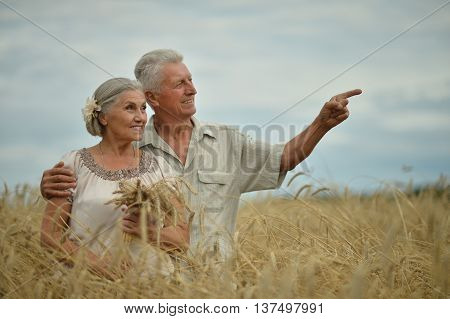 Beautiful happy senior couple in summer field, man pointing by his hand