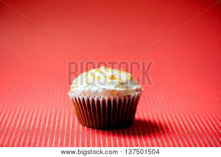 Homemade Sweet Vanilla And Chocolate Cupcake With Buttercream An