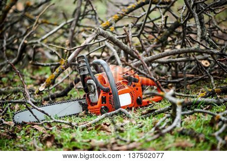 Gasoline Professional Chainsaw Cutting Branches Against Wood Bac