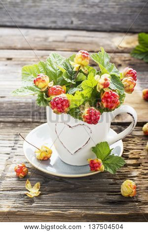 Sprigs northern cloudberry keep pace with red berries in a white ceramic mug on a simple wooden background. Useful rare berries growing in the north