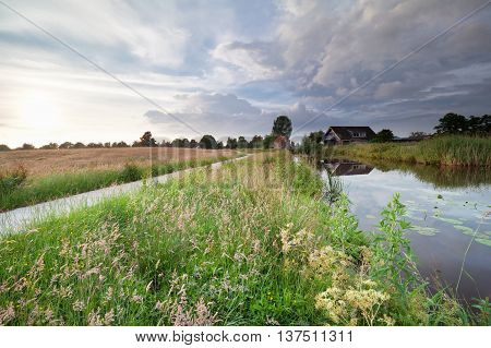 Dutch farmland with canal and summer meadows Netherlands