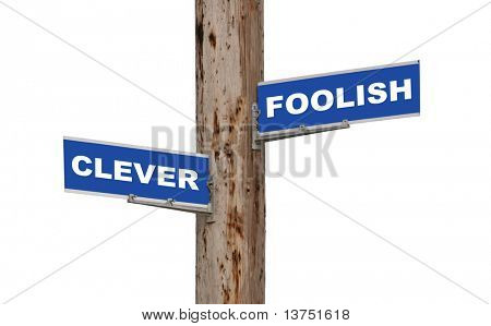 Street sign concepts clever or foolish isolated
