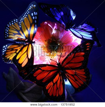 A trio of butterflies at night. Illuminated by light