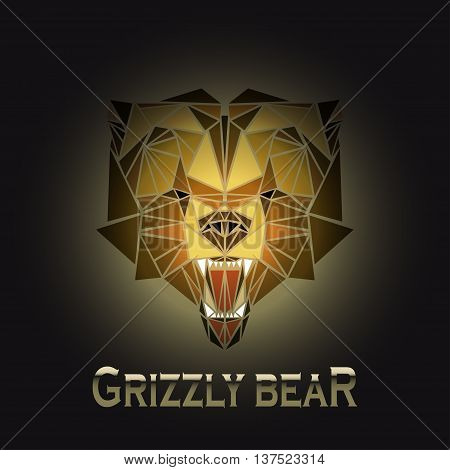 vector illustration abstract portrait of a grizzly bear