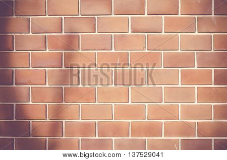 Vintage Filter :orange Ruled Brick Wall With Tree Shadow Texture Background
