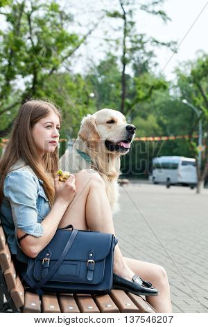 Portrait of a young girl and her dog on a park bench outdoors. Happy owner sitting next to his dog breed golden retriever on a background of summer city. Human friendship and dogs. Joint pastime.