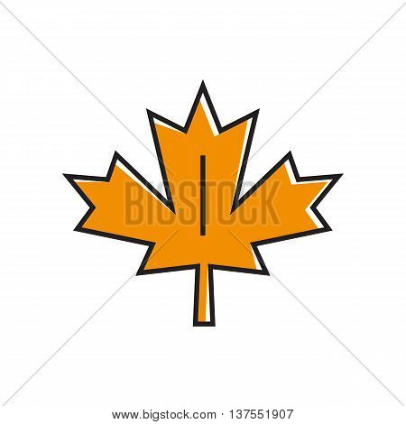 Maple leaf illustration. Tree, park, autumn, nature. Autumn concept. Can be used for topics like season, plant, nature