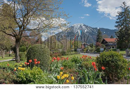 Rottach-egern At Springtime With Tulip Flowerbed