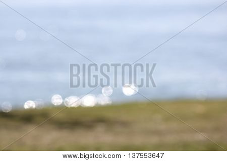 Soft Focus Ocean and Grass Background