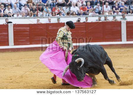 Pozoblanco Spain - September 23 2011: The Spanish Bullfighter Julian Lopez El Juli bullfighting with the crutch in the Bullring of Pozoblanco Spain
