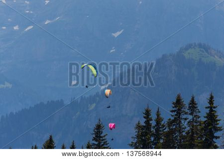 Three paragliders flying in the mountains with forest and trees