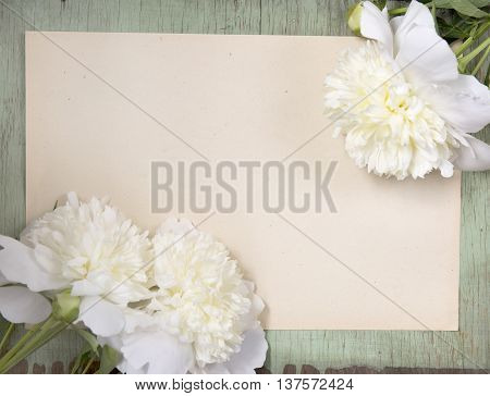 Bouquet of white peony against the rough wrapping paper. Peonies mockup