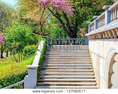 Marbel stairs and parapet in a park with green and purple blossoming trees