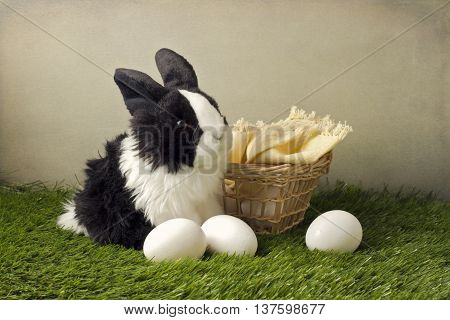 Easter composition with eggs and rabit on grass