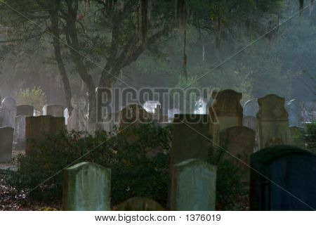 Foggy Morning In The Cemetery