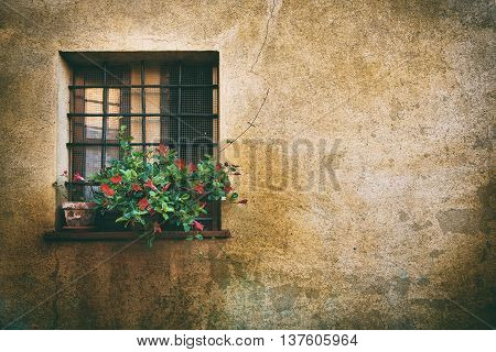Window at the Pienza city wall, Italy, Tuscany. Romantic travel grunge floral background.