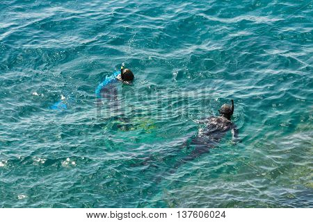 image of a scuba diving swimmer view from above