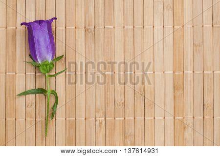 Ultramarine Colored Bellflower On Beige Bamboo Napkin