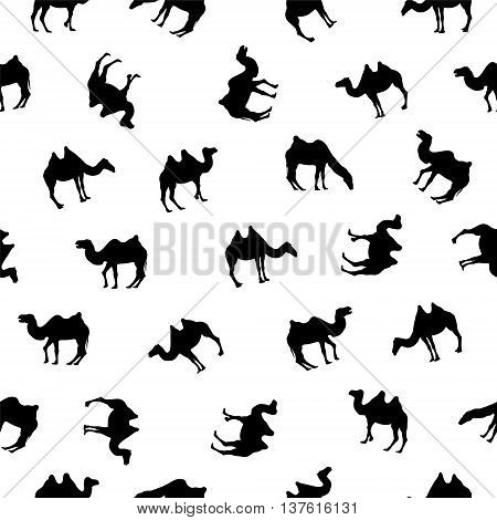 seamless pattern - camels. Black on white silhouettes