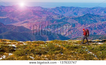 One Male Hiker walking on Trail across Grassy Ridge with Backpack panoramic Mountains View bright Autumnal Colors and Sun Raising